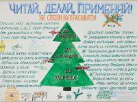 (2 место) Ганин Егор, 2 кл, МО ШИСП, рук. Л.Р.Мальцева