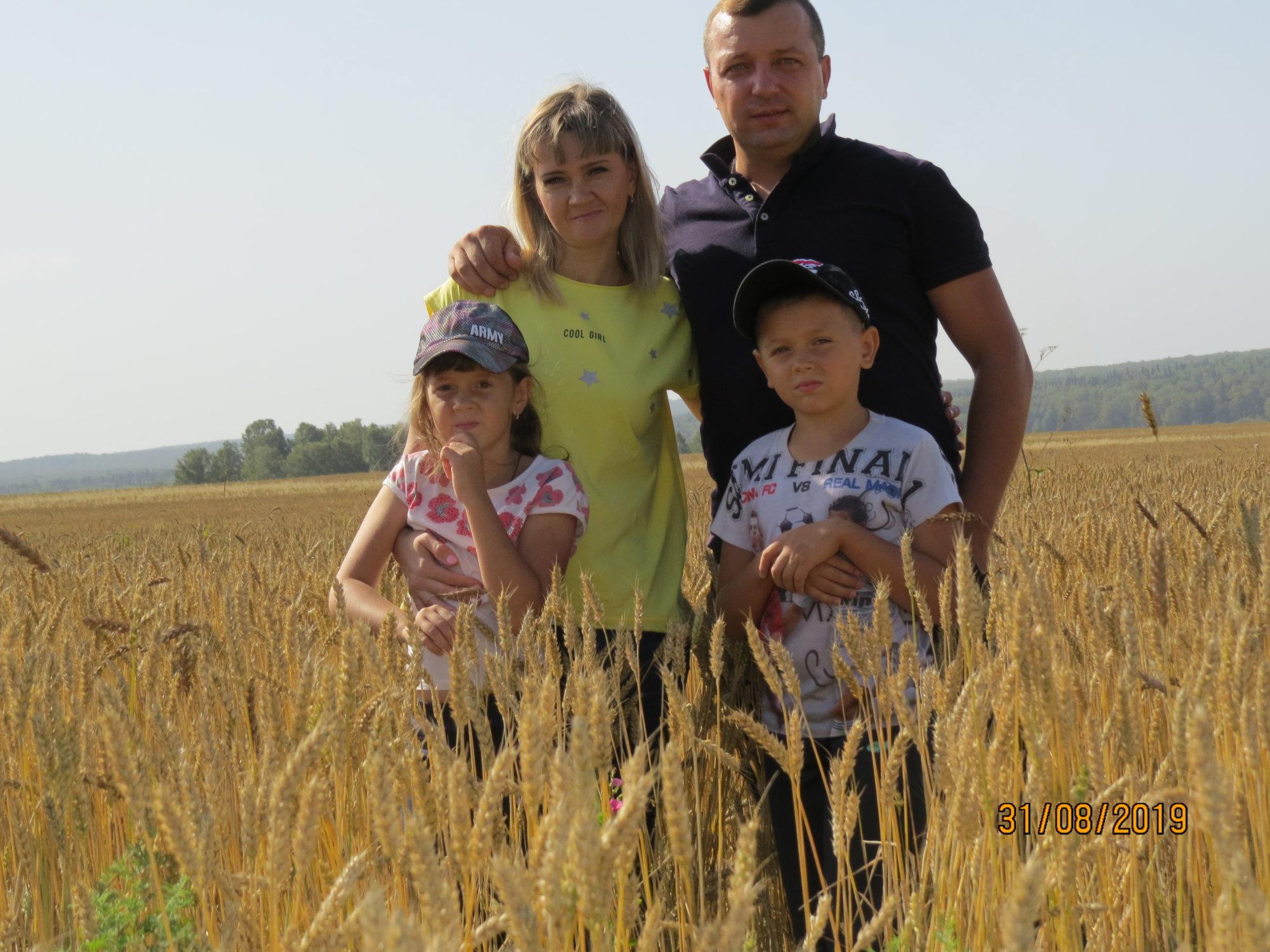 МАДОУ 9 Моя семья-как колосок пшеницы